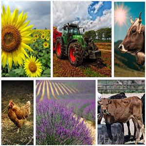 Agraría