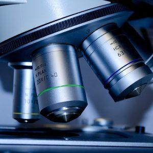 Citología del tracto genital femenino y de la glándula mamaria