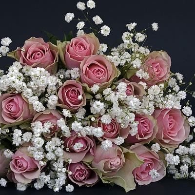 Trabajos auxiliares en la elaboración de composiciones con flores y plantas